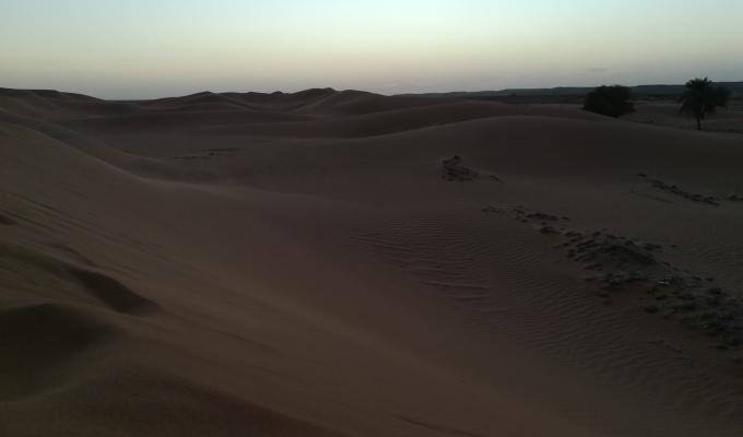 #Día 4 El oasis deDajla